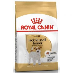 Jack-Russell-Terrier-Adult–500gm